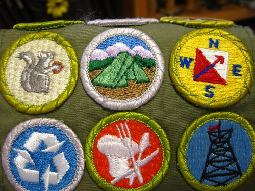 scout_badges_medium